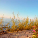 Байкал Танхой побережье